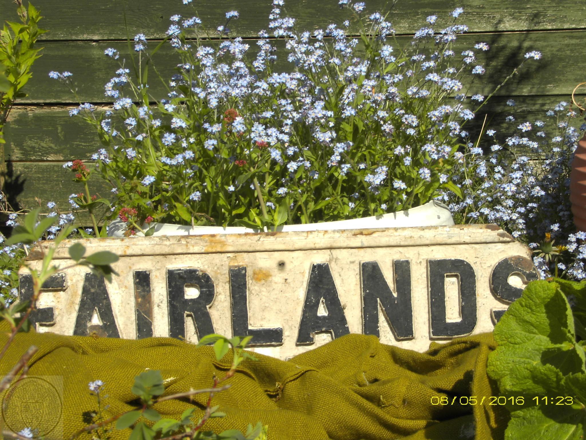 Fairlands